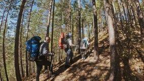 viajes de la familia Ambiente de la gente por las monta?as, r?os, corrientes Los padres y los ni?os caminan usando emigrar polos  almacen de video