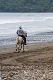 Viajes traseros del montar a caballo del caballo Foto de archivo