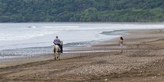 Viajes traseros del montar a caballo del caballo Foto de archivo libre de regalías