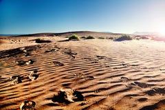 Viajes y aventuras Paisaje y huellas del desierto de Marruecos en la arena Puesta del sol escénica imágenes de archivo libres de regalías