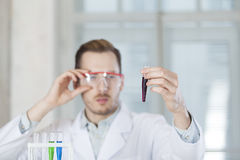 The vial of blood in the hands of the scientist. The vial of blood is  in the hands of the scientist in the laboratary Stock Photography