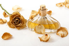 Vial of perfume and dry rose flower Stock Image