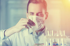The vial with the plant in the hands of the biologist. The vial with the plant is in the hands of the biologist in the mask Royalty Free Stock Image