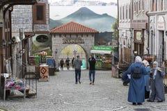 Vialand rozrywki o temacie park rozrywki Fotografia Stock