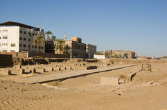 Viale degli Sphinxes, Luxor Fotografia Stock Libera da Diritti