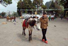Viale di Darjeeling Fotografia Stock Libera da Diritti