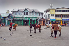 Viale di Darjeeling Immagine Stock