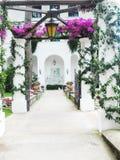 Viale di un giardino di fiore Fotografia Stock