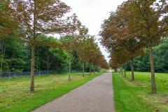 Viale lungo nei giardini del palazzo, Fredensborg, Danimarca fotografia stock