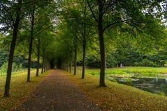 Viale lungo nei giardini del palazzo, Fredensborg, Danimarca immagine stock