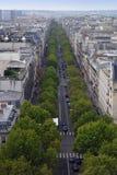 Viale parigino Fotografia Stock