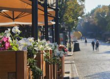 viale pedonale Sun-acceso a Odessa Fotografia Stock