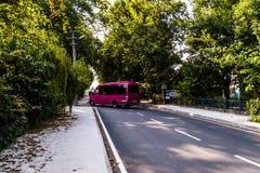 Viale - strada con la linea di alberi nella città di Yalova - la Turchia Fotografia Stock Libera da Diritti