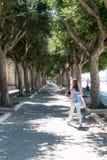 Viale Tree-lined Fotografia Stock Libera da Diritti