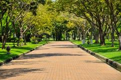Viale verde alla Tailandia Immagine Stock