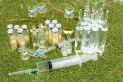 Vials of the vaccine against the background of pine needles Stock Photos