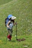 Viandante alpina Immagini Stock
