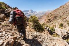 Viandante in alte montagne Immagine Stock Libera da Diritti