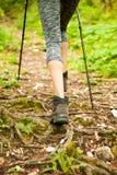 Viandante attiva che hking su un percorso stretto in foresta su una molla in anticipo Immagini Stock