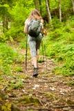 Viandante attiva che hking su un percorso stretto in foresta su una molla in anticipo Immagine Stock Libera da Diritti