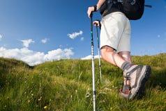Viandante che cammina lungo un percorso della montagna. Immagini Stock