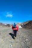Viandante con i pali che cammina la traccia pietrosa Fotografia Stock Libera da Diritti