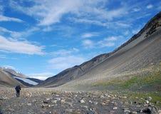 Viandante dell'isola Ellesmere Immagini Stock Libere da Diritti