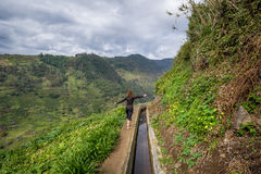 Viandante della donna alla montagna della nova di Levada che fa un'escursione percorso, Madera Immagini Stock