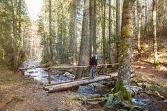 Viandante della donna che attraversa una passerella in foresta Fotografia Stock Libera da Diritti