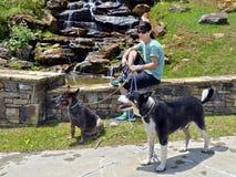 Viandante della donna con i cani Fotografia Stock Libera da Diritti