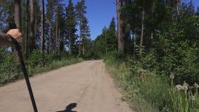 Viandante della donna con lo zaino e pali del nordico che si allontanano sul sentiero forestale stock footage