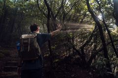 Viandante e raggi del sole fotografie stock libere da diritti