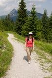 Viandante femminile nelle alpi austriache Immagini Stock
