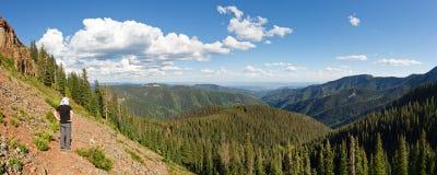 Viandante nella foresta nazionale di San Juan, Colorado Fotografie Stock