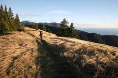 Viandante nelle colline di Big Sur, California, U.S.A. Immagini Stock Libere da Diritti