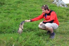 Viandante nelle montagne con una marmotta curiosa Fotografia Stock Libera da Diritti