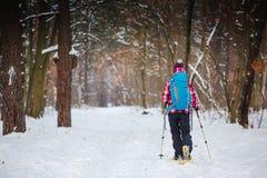 Viandante nello sport, nell'ispirazione e nel viaggio della foresta di inverno immagini stock