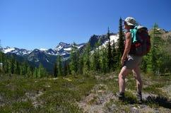 Viandante su una cima della montagna Fotografie Stock Libere da Diritti
