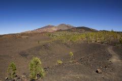Viandante sul vulcano Immagine Stock