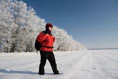 Viandante sulla neve Immagini Stock