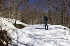 Viandante sulla traccia di montagna Fotografia Stock
