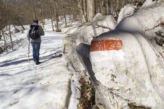 Viandante sulla traccia di montagna Fotografia Stock Libera da Diritti