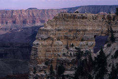 Viandanti al punto di vista della finestra dell'angelo, orlo del nord della sosta nazionale del grande canyon, Arizona Fotografia Stock