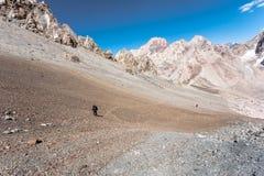 Viandanti in alte montagne Fotografia Stock