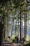 Viandanti in alto Tatras in Slovacchia Immagine Stock