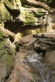 Viandanti in canyon Fotografie Stock