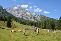Viandanti davanti alla montagna di Watzmann Immagine Stock Libera da Diritti