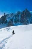 Viandanti in montagne di inverno Immagine Stock