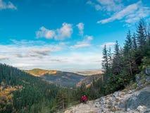 Viandanti sulla traccia alpina Fotografie Stock