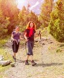 Viandanti sulla traccia della foresta Fotografia Stock